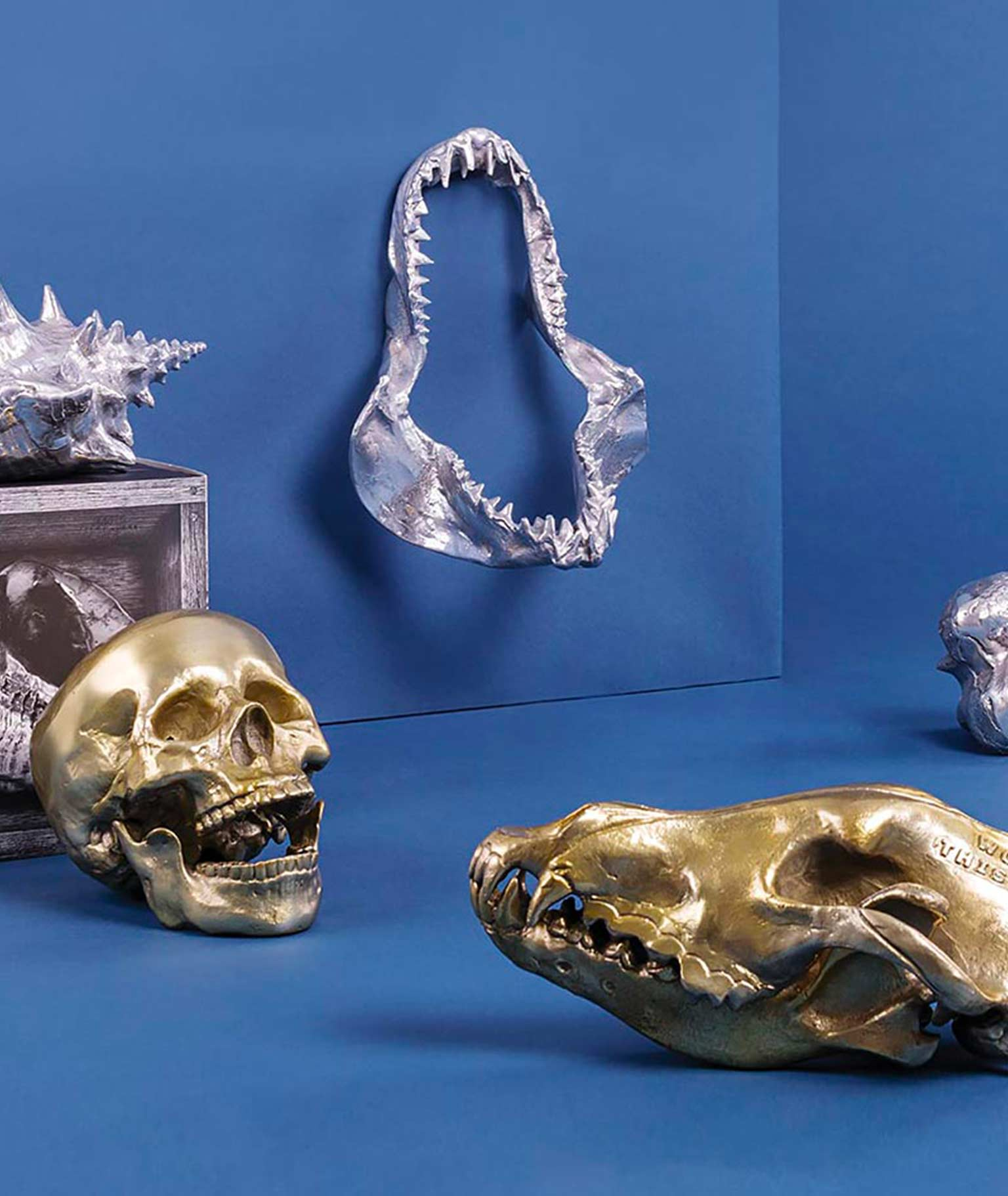 Diesel Living: Home Accessories with Seletti